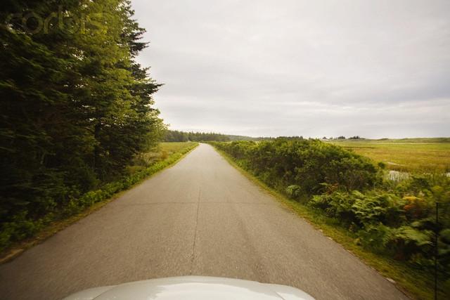 Car Driving on Rural Road